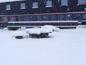 hovringen-eerste-sneeuw