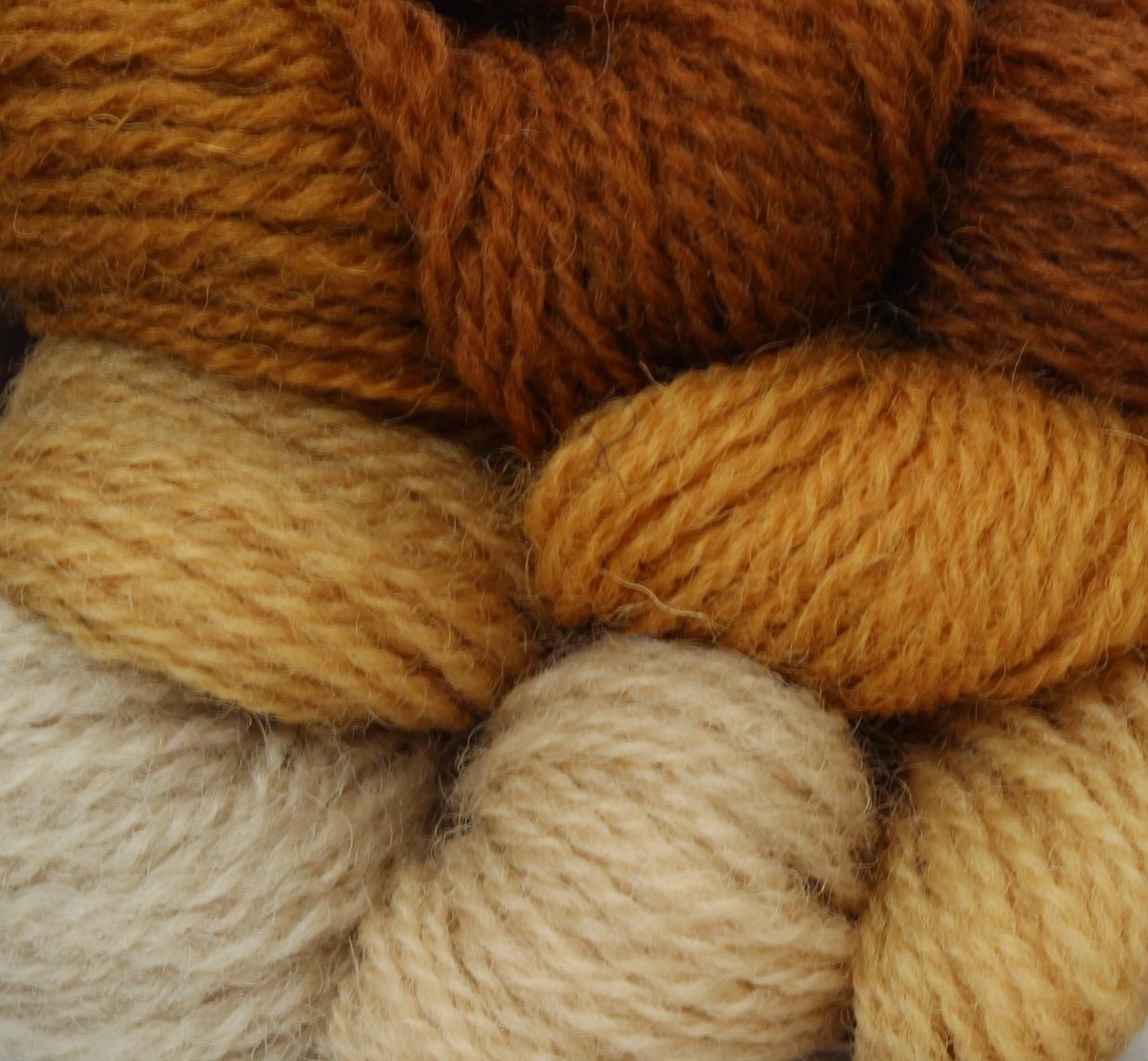 691-698 Honeysuckle Yellow